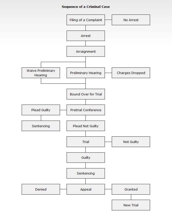 Criminal Case Flow Chart